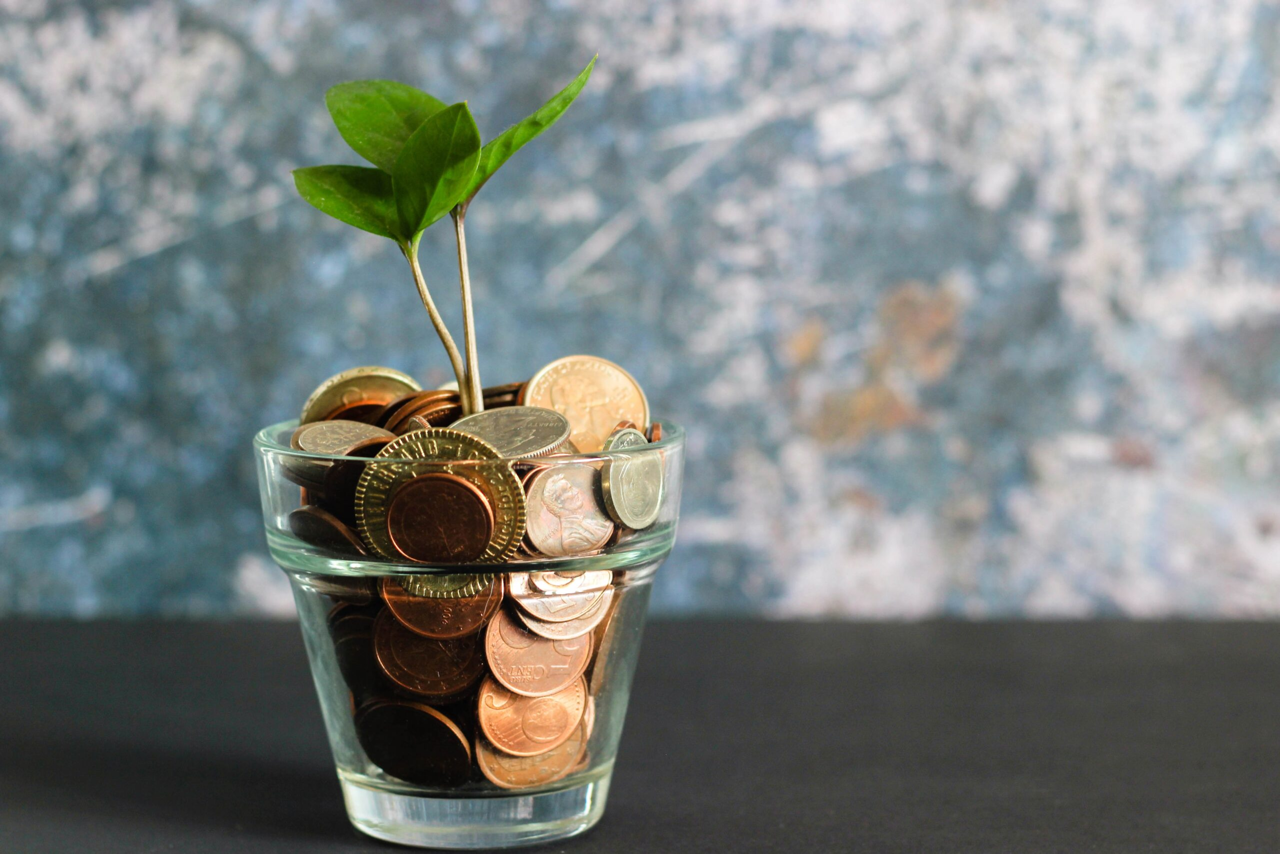 A clear cup holding some coins and a sprouting plant